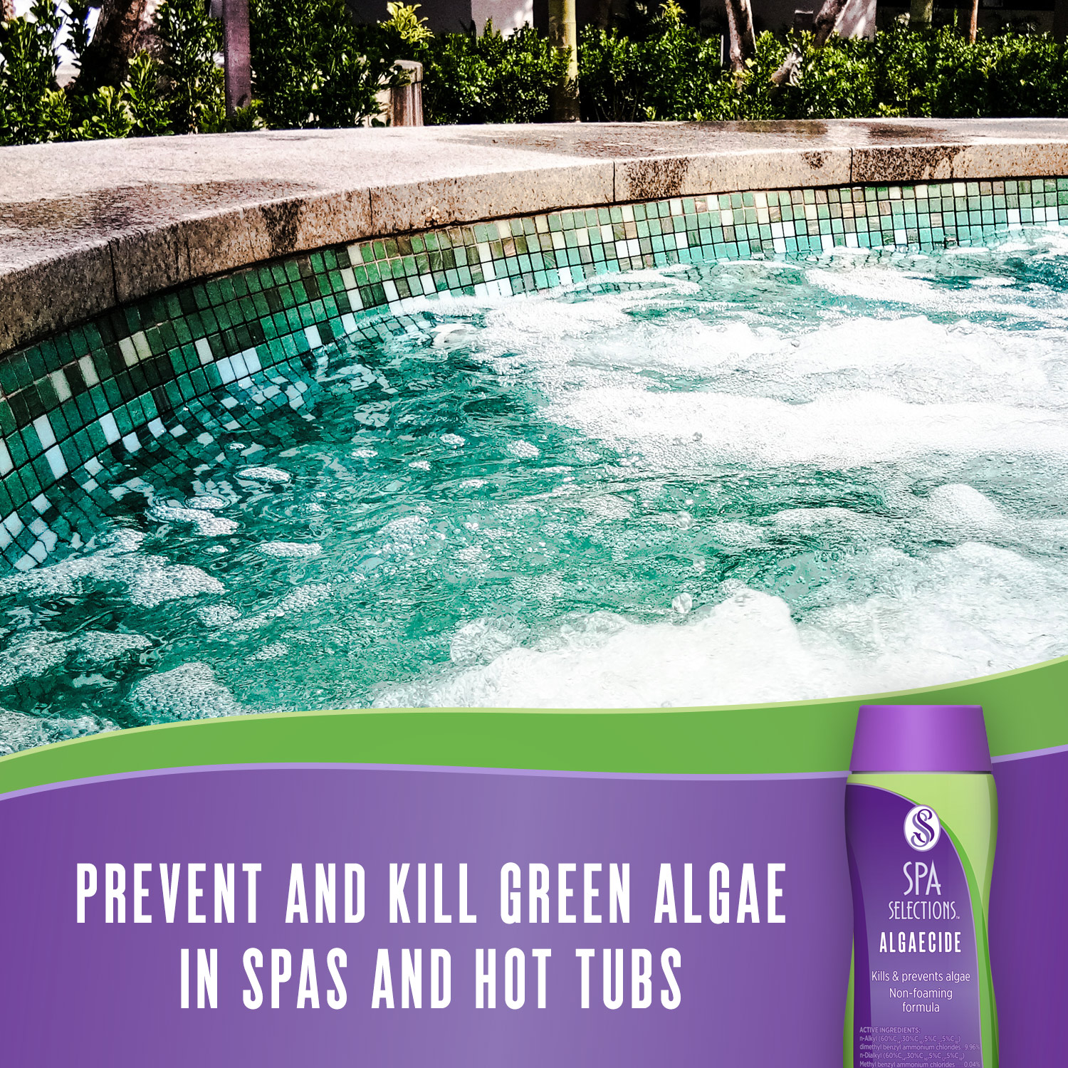 Prevent and kill green algae in spas and hot tubs with Spa Selections Algaecide.